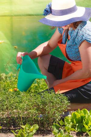 Gardening. Mature Woman In Orange Apron Big Hat Working In Garden ...