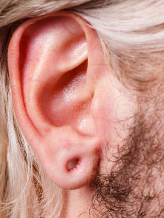 Stretched lobe piercing, grunge concept. Pierced man ear without black plug tunnel
