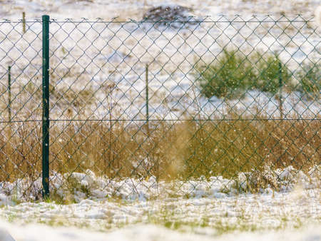 Garden fence made of green wires during winter snowy weather. Outdoor details concept.