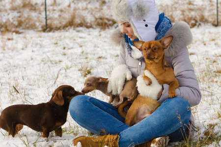 Young woman having fun outside in snow. Female playing with her small purebreed dogs puppies in cold winter day.