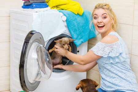 Funny woman in bathroom puts her pet dog in washing machine. Animals at home concept.