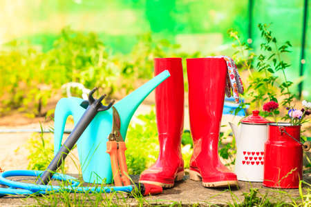 Gardening tools outdoor in garden, red rubber boots water can blue hose, greenhouse in the background
