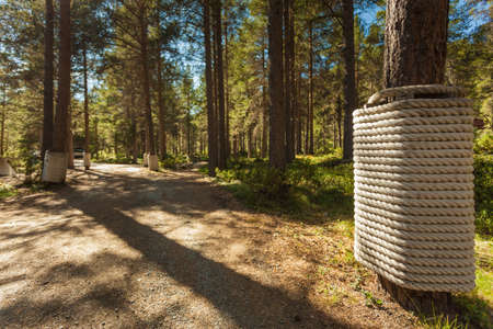 Liasanden rest stop area in pine forest, Leirdalen Lom municipality, Norway. National tourist route 55 Sognefjellet. Holidays relaxation on trip.