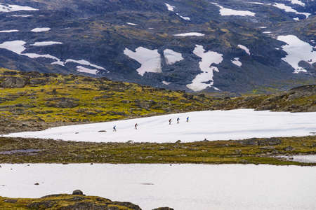 Sport activity. Cross country summer ski at road 55 Sognefjellet national tourist route between Lom and Luster, Norway. People training on track.