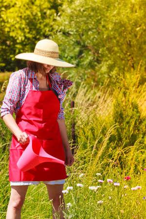 Gardening. Mature woman working in her backyard garden watering plants flowers outdoor