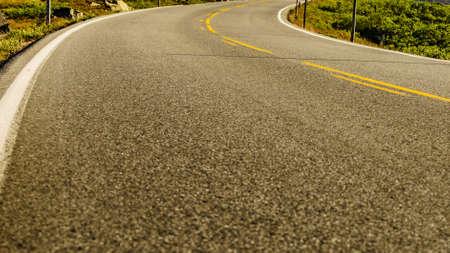 Empty asphalt road running through green nature 写真素材