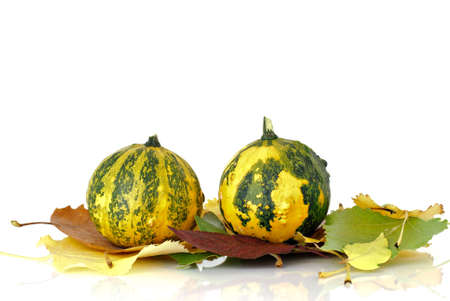 Decorative pumpkins and autumn leaves photo