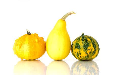 Decorative pumpkins photo