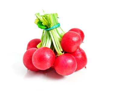 fascicle: Bunch of radish isolated on white