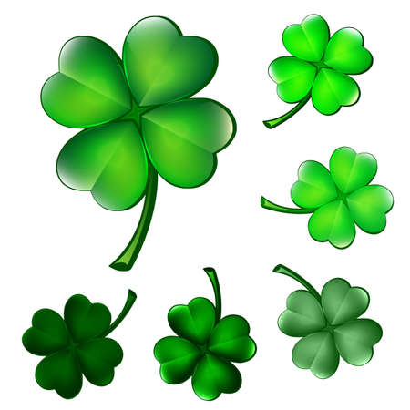 Four-leaf clover illustration Vector