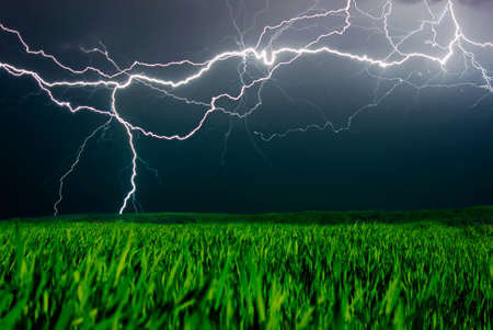 thunderclap: Lightning above the field Stock Photo