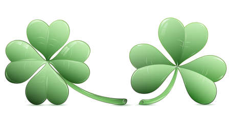 Four leaf clover and three leaf clover over white Vector