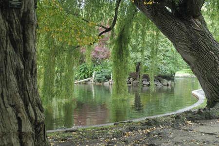 boston common: Boston Common park, Massachusetts