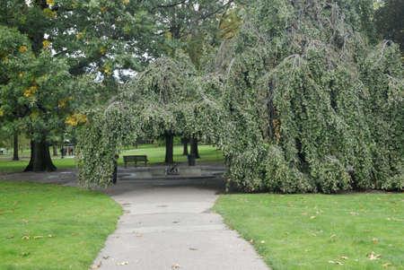 boston common: Garden path in the Boston Common park, Massachusetts
