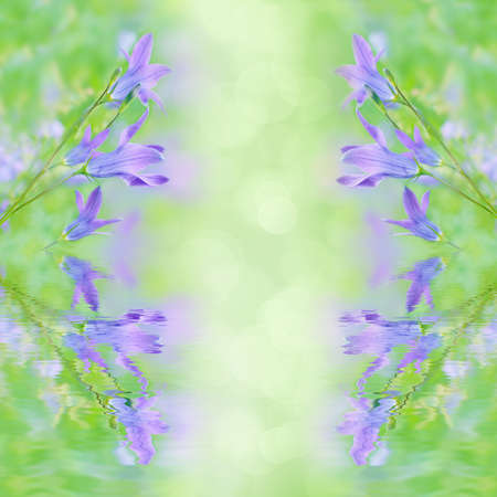 Beautiful summer background with campanula bouquet  Reflection in water Floral design  photo