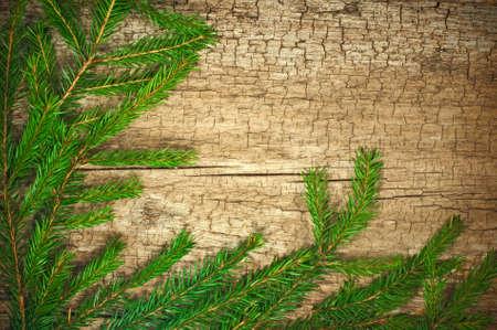 hristmas: Christmas fir tree on old wooden board ,сhristmas green framework