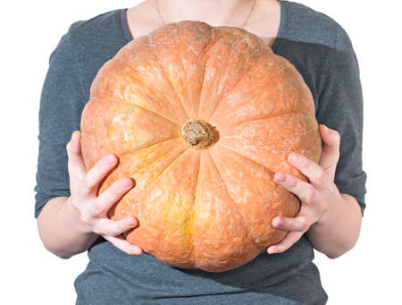large pumpkin: Woman holds in hands of large ripe orange pumpkin.