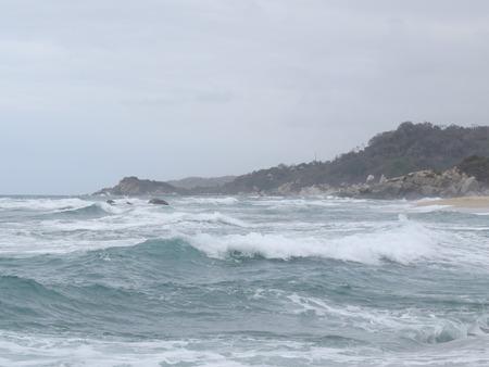 oceana: surf