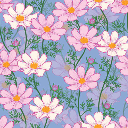 Floral seamless pattern with cosmos flower. Pink flowers on blue background design.
