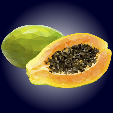 illustration papaya, polygonal papaya, low poly