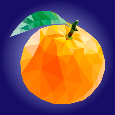 illustration orange, polygonal orange, low poly 일러스트