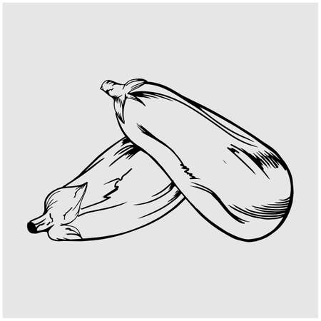Simple thin line eggplant icon vector
