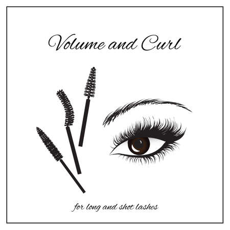 types of mascara brushes and makeup classification Illustration