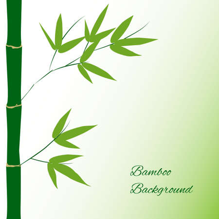 japanese garden: Branch and stalk of bamboo on a green background, floral pattern Illustration