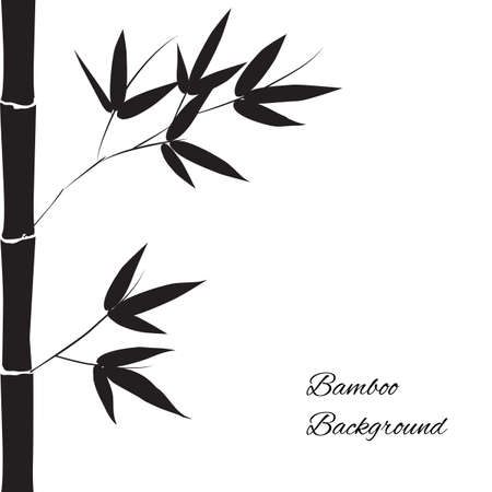 japanese garden: Black branch and stalk of bamboo on a white  background, floral pattern