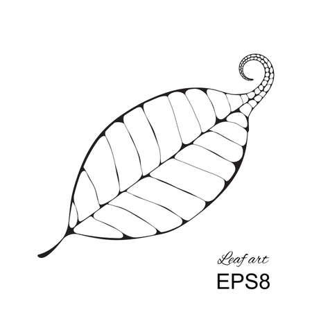 venation: Vector delicate macro leaf venation isolated silhouette.