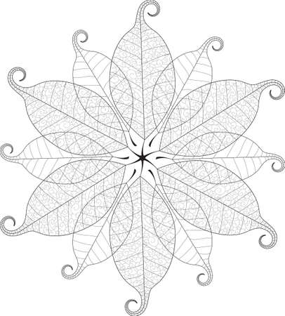 macro: Vector delicate macro leaf mandala. Illustration