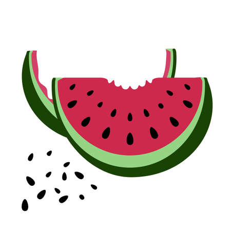 rind: Hand drawn vector watermelon with rind and seed isolated on white background