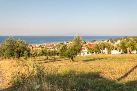 Greek rural landscape with olive groves, white houses, red roofs and blue sea. Halkidiki