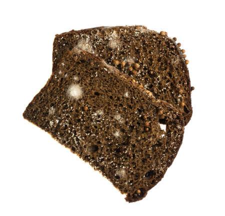 penicillium: Mold on Black Bread Isolated on White Background