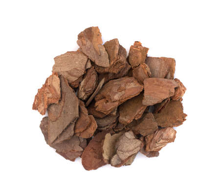 Heap of dry pine tree bark pieces isolated on white. Broken woods nature chip