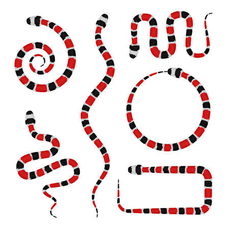 Vector 3d Illustration of Coral Snake or Micrurus Isolated on White Background. Serpent with Red and Black Stripes Illustration