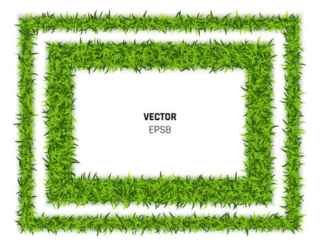 Green Grass Rectangle Background. Eco Home Concept. 3d Vector Illustration Illustration