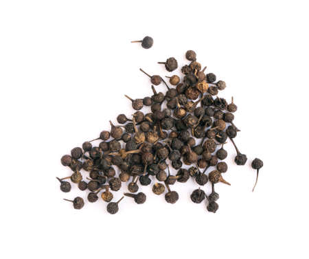 Piperaceae or Piper Cubeba. Cubeb Pepper Isolated on White Background Stock Photo
