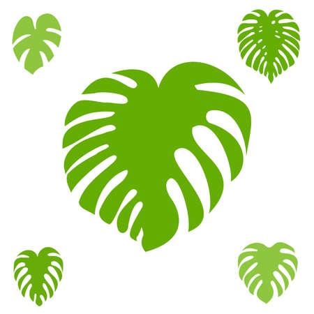 Monstera leaf vector icon collection. Exotic tropical plant silhouettes Illustration