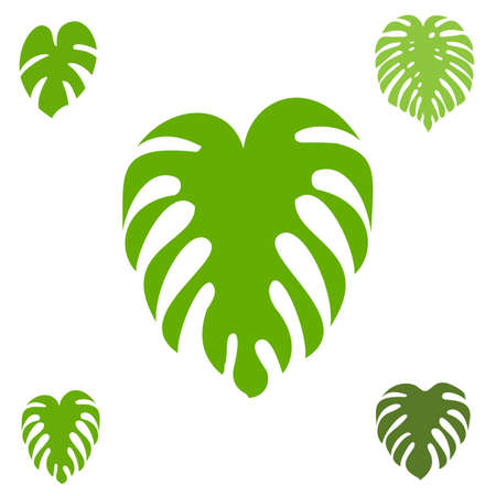 Monstera leaf vector icon collection