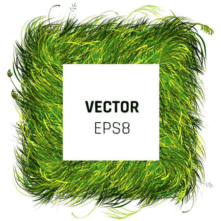 Green Grass Rectangle Background. Eco Home Concept. 3d Vector Illustration Illustration