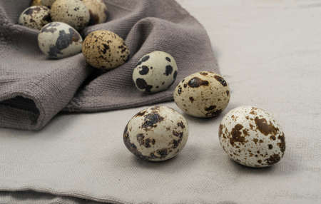 Quail Eggs on Grey Background. Small Whole Eggs Collection 스톡 콘텐츠