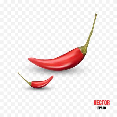 Foto realistica 3d illustrazione vettoriale di peperoncino piccante isolato. Mucchio di pepe di Caienna piccante rosso su sfondo trasparente
