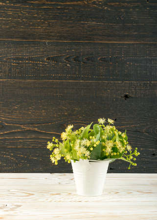 Linden Flowers on Wooden Background. Beautiful Summer Bouquet over Wood Table Texture. Tilia Blossom with Place for Text