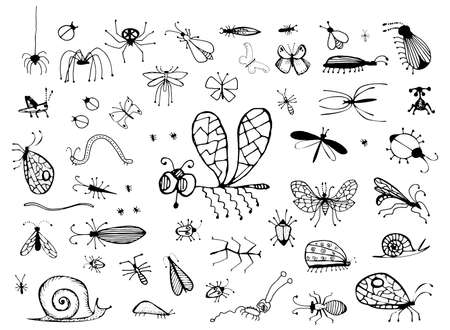 Set of Hand Drawn Insects Bugs, Worms, Caterpillar, Butterfly, Spider, Snail and Dragonfly. Small Animals Sketch Vector Illustration Isolated on White Background