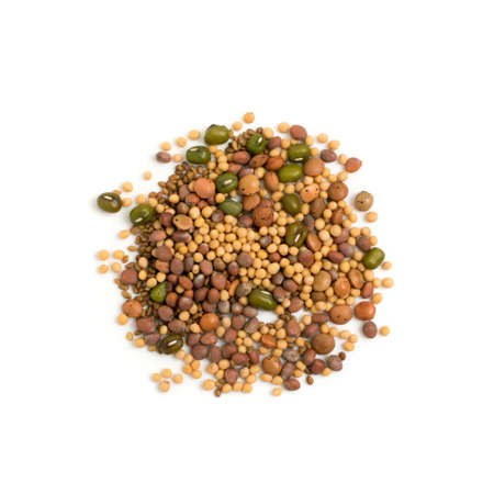 Edible seed mix with dry radish, mustard, lentils, alfalfa seeds and mung beans isolated on white background. Seed mixture for healthy nutrition Banque d'images - 114271354
