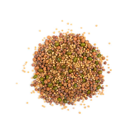 Edible seed mix with dry radish, mustard, lentils, alfalfa seeds and mung beans isolated on white background. Seed mixture for healthy nutrition Banque d'images - 114271113