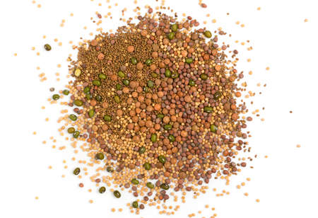 Edible seed mix with dry radish, mustard, lentils, alfalfa seeds and mung beans isolated on white background. Seed mixture for healthy nutrition Banque d'images - 114270907