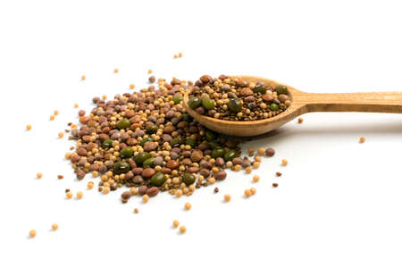 Edible seed mix with dry radish, mustard, lentils, alfalfa seeds and mung beans isolated on white background. Seed mixture for healthy nutrition in wood spoon Banque d'images - 114270726