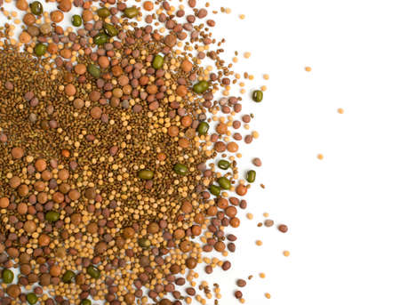 Edible seed mix with dry radish, mustard, lentils, alfalfa seeds and mung beans isolated on white background. Seed mixture for healthy nutrition Banque d'images - 114269989